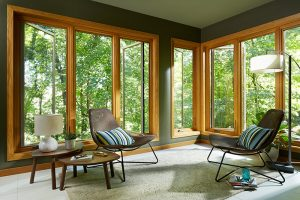 Image of a living room with floor-to-ceiling windows, which were installed by Renewal by Andersen in Sacrmanto, CA