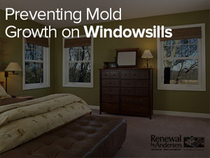 Preventing Mold Growth on Windowsills